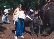 Baby Thai elephant with Pat Ross